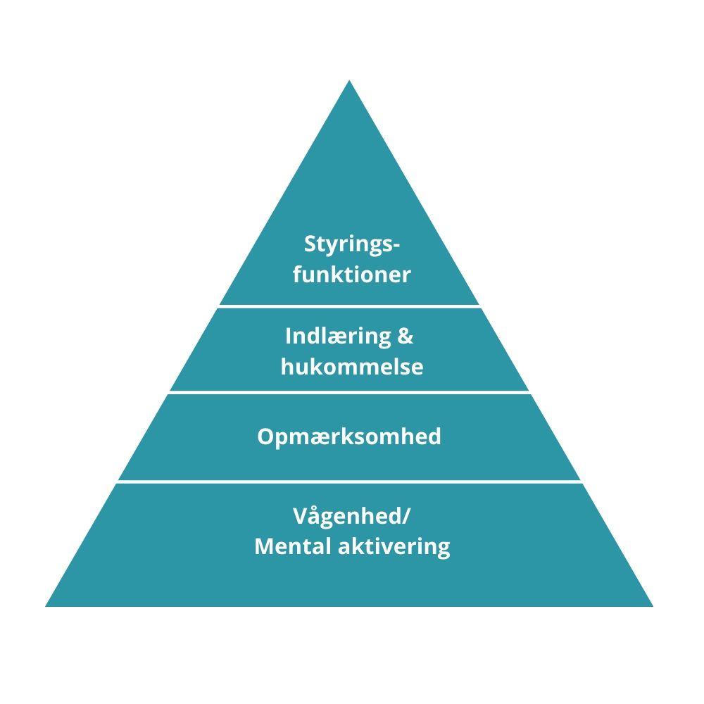 Den kognitive pyramide | Psykologen i København